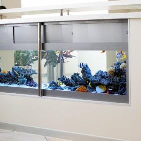 Вместительный аквариум в низкой перегородке