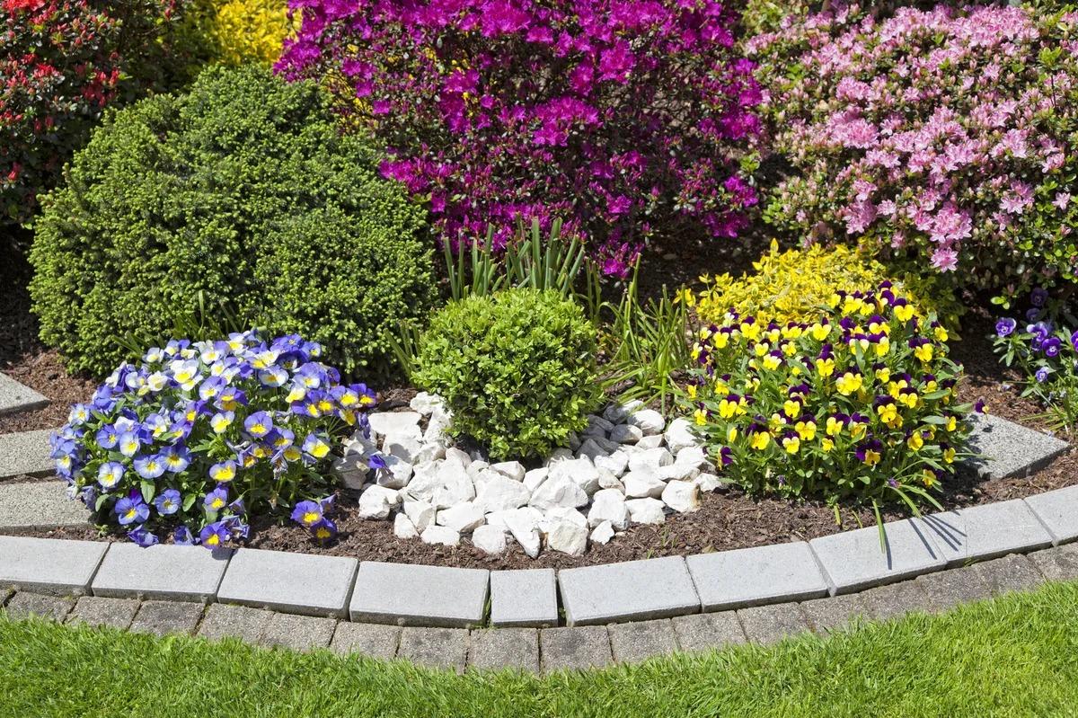 для как красиво посадить цветы на клумбе фото что маленькую