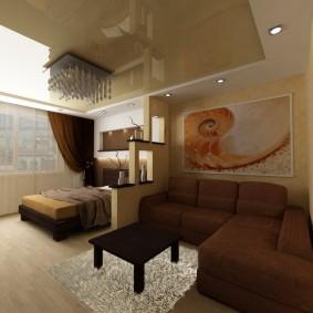 комната 16 кв м в однокомнатной квартире идеи оформления