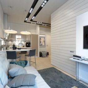 комната 16 кв м в однокомнатной квартире идеи фото