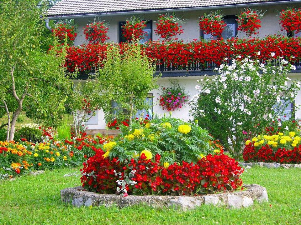 ландшафтный дизайн с цветами