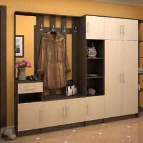 мебельная стенка в прихожую идеи варианты