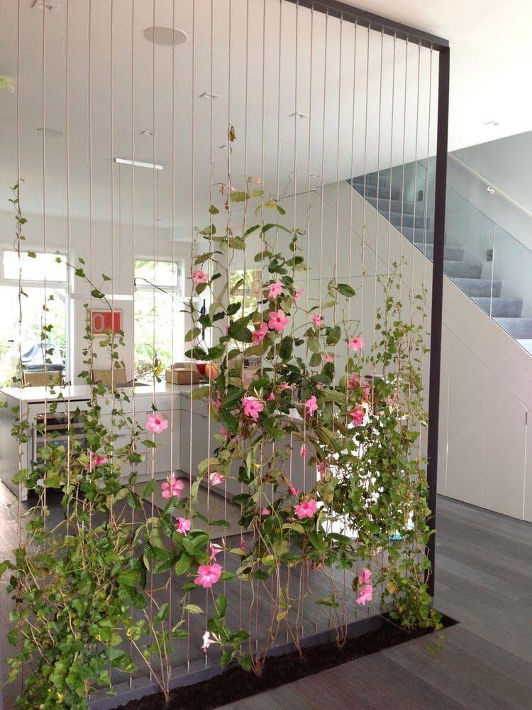 Декор жилой комнаты вьющимися растениями