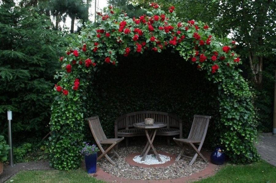 Небольшая беседка из плетистых роз