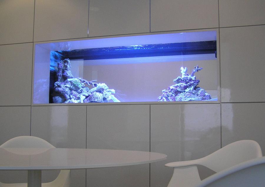 Голубая подсветка встроенного в стену аквариума