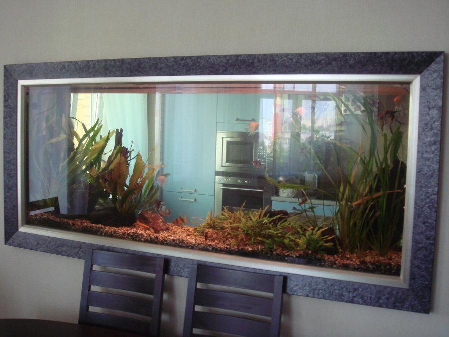 Прозрачный аквариум в тонкой межкомнатной перегородке