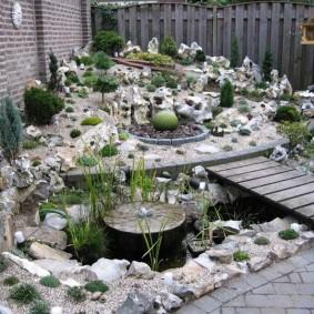 растения для альпийской горки виды дизайна
