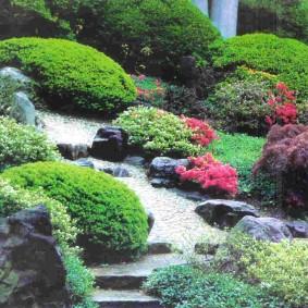 растения для альпийской горки варианты оформления