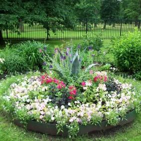 растения в ландшафтном дизайне идеи декор