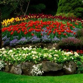 растения в ландшафтном дизайне варианты оформления