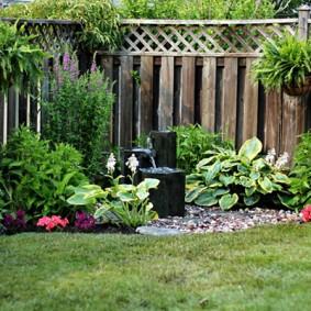 растения вдоль забора фото декор