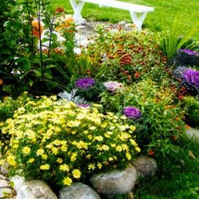 растения вдоль забора декор идеи