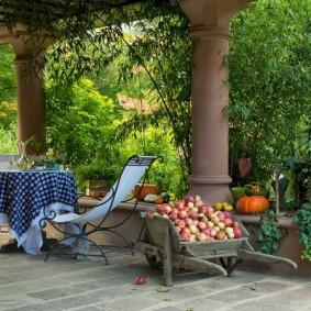 сад в частном доме виды дизайна