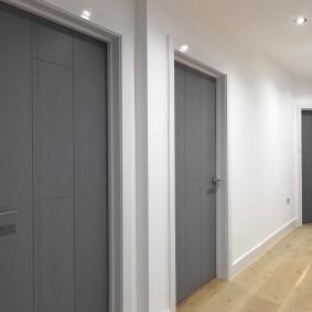 серые двери в квартире виды оформления