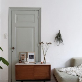 серые двери в интерьере квартиры