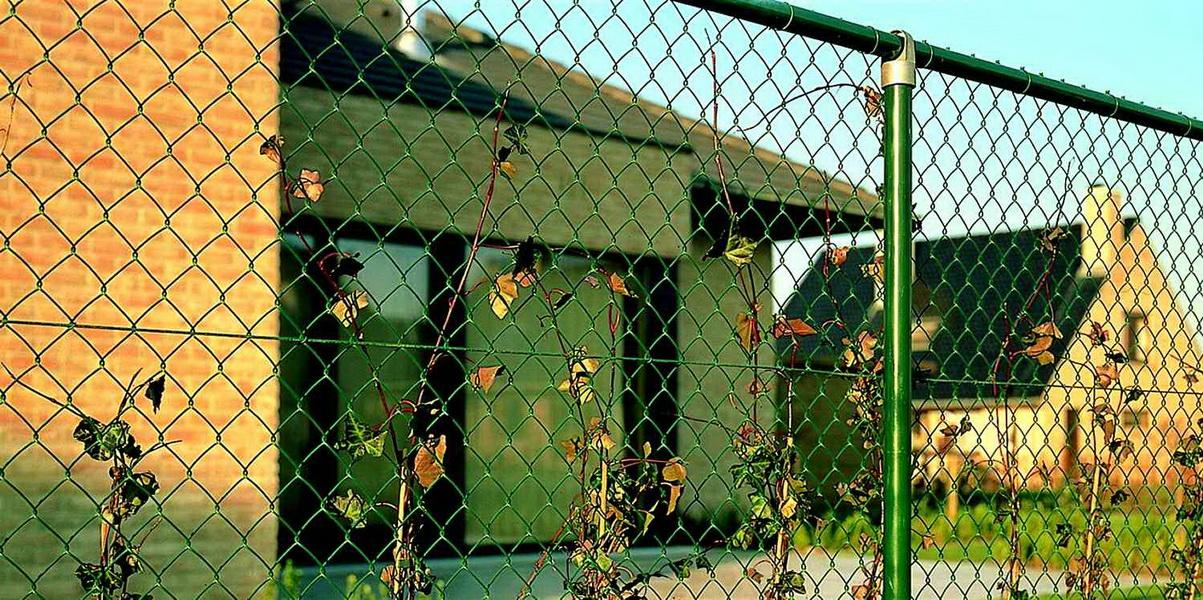 зеленая сетка рабица