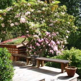современная садовая скамья идеи оформление