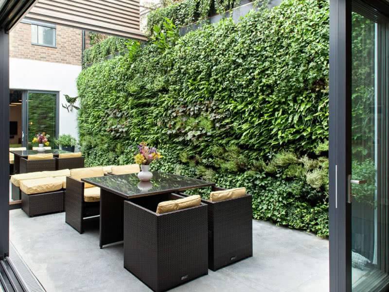 вертикальное озеленение на стену