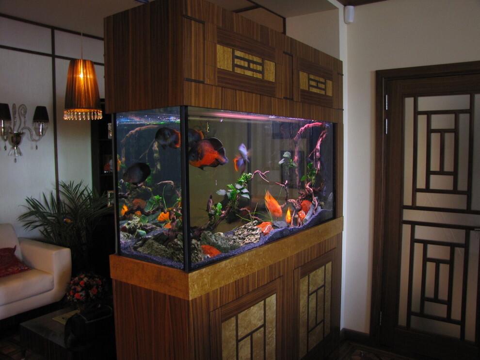 Аквариум в японском стиле с живыми рыбами