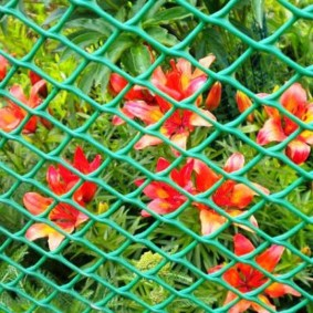 забор из сетки на даче фото варианты