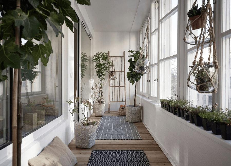 Как обустроить зимний сад на лоджии или балконе?