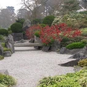 Айва в ландшафте японского сада