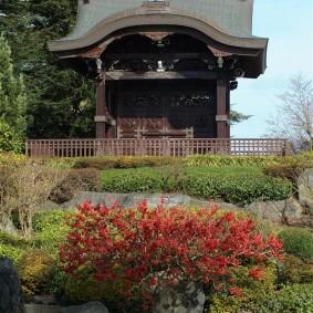 Японский сад с деревянной беседкой