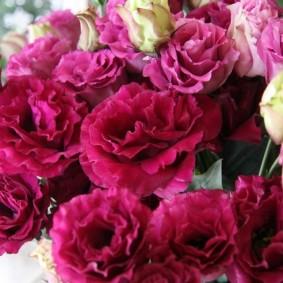 Роскошный букет из махровых цветов