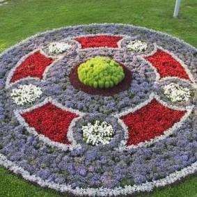 Цветочная композиция из низкорослых растений