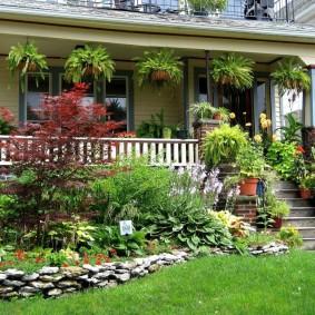 Декор террасы растениями в кашпо