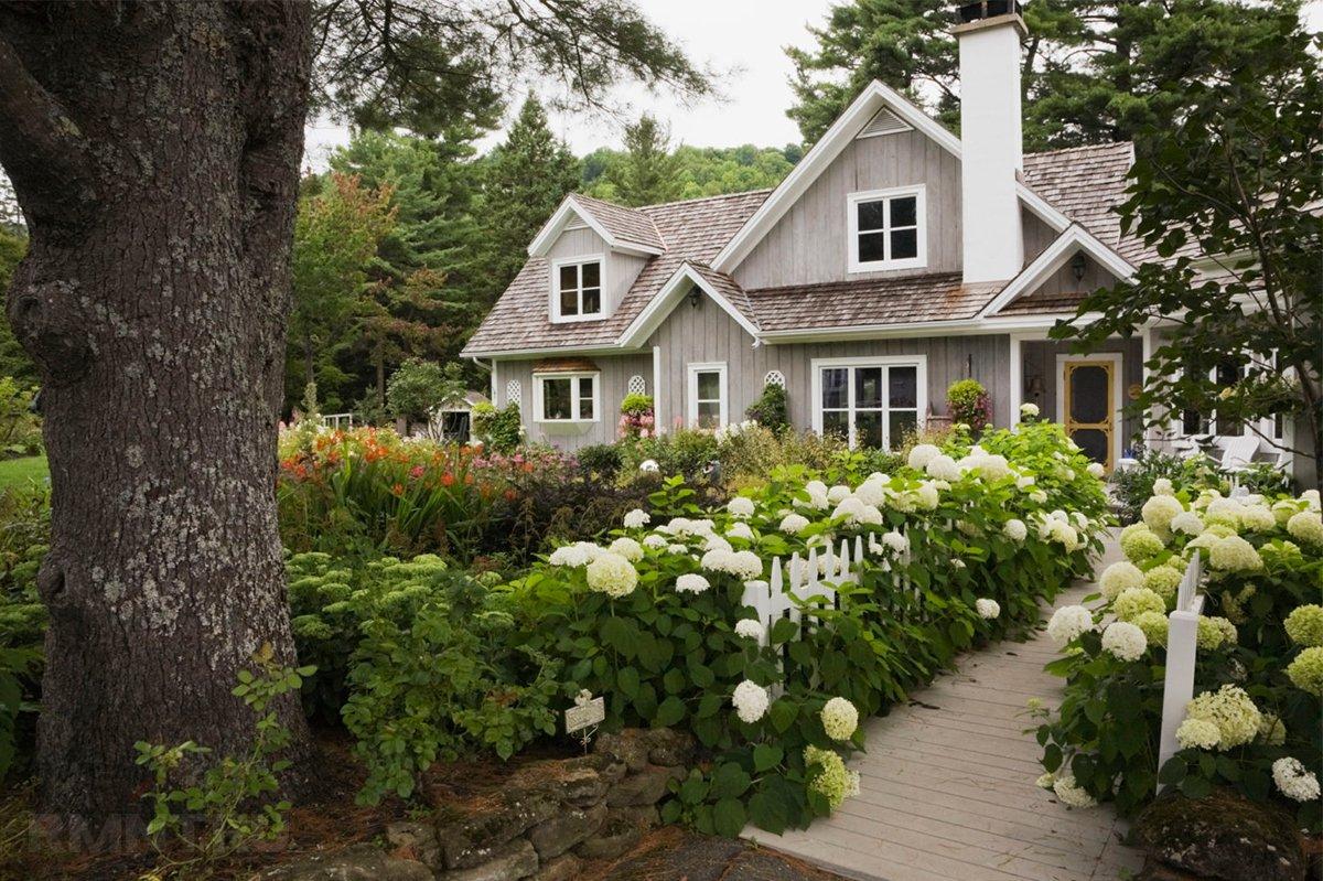 фото дом цветы сад прошлом году