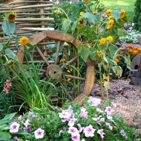 Старое колесо от телеги на клумбе с петунией