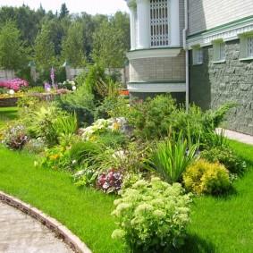 Композиция из разных растений перед цоколем частного дома