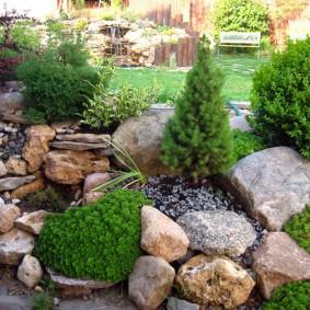 Каменистая клумба с хвойными растениями