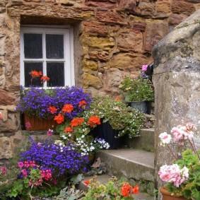 Цветы в горшках около каменной стены