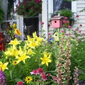 Ярко-желтые цветки на простой клумбе