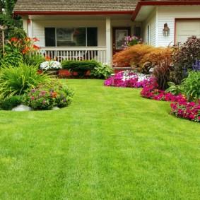 Английский газон между клумбами с цветами