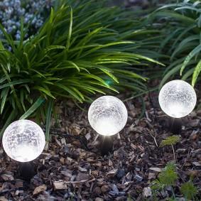 шарообразные фонарики на клумбе с многолетниками