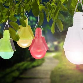 Пластиковые фонарики на ветке дерева