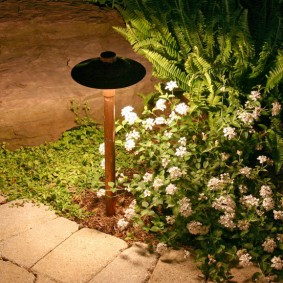 Функциональная подсветка садовой дорожки