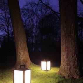 Переносные светильники между стволов деревьев