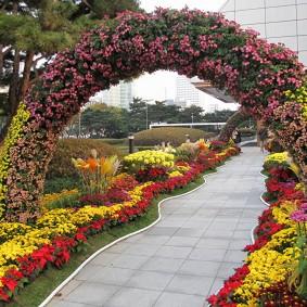 Садовая арка из цветущих хризантем