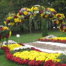 Фестиваль хризантем в Южной Корее