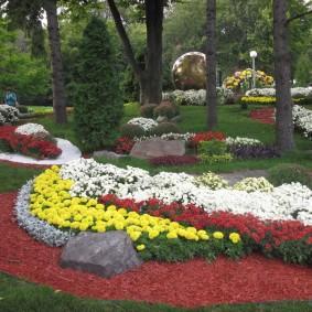 Клумбы с хризантемами в парке отдыха