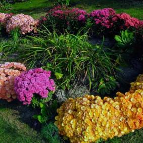 Цветочная композиция на загородном участке