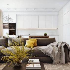 Зонирование диваном кухни гостиной
