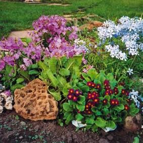Цветочная композиция из нескольких растений