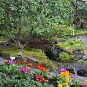 Тенистый сад с цветущими растениями