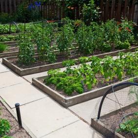 Бетонная плитка между огородными грядками