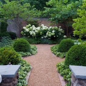 Симметричная посадка декоративных кустарников